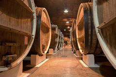 Winery cellar. The winery storage underground with big barrels Stock Image