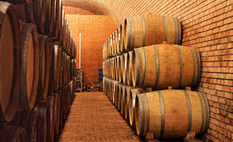 In the winery cellar Royalty Free Stock Photos