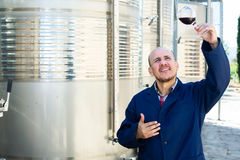 Winery employee with glass of wine Royalty Free Stock Photography