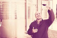 Winery employee with glass of wine Stock Photos