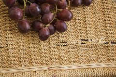 Winery grapes Stock Photography