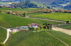 Winery and green vineyards on the hill in Italy. Stock Photos