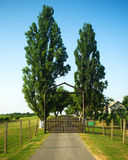 Winery house gates Stock Photography