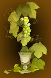 Winery Illustration. Grapes illustrating winery and the glass Royalty Free Stock Image