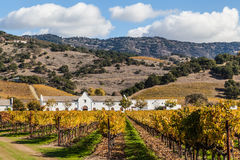 Winery. Landscape of a winery during the autumn season at the wine county, Napa California, blue, yellow, orange and green colors Stock Image