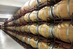 Winery with  many wooden barrels Royalty Free Stock Photos