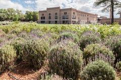 Winery in Mendoza Argentina Stock Photos