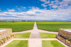 Winery in Mendoza, Argentina Royalty Free Stock Image