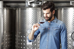 Winery owner. Portrait of winery owner at work. Young professional winemaker standing in front of stainless steel vessel while tasting a glass of red wine stock photography