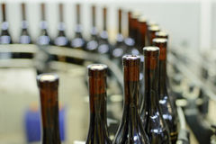 Winery Production Line. Bottles at production line at winery Royalty Free Stock Photography