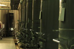 Winery Santa Cruz Chile. View of Winery Santa Cruz Chile royalty free stock image