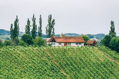 Winery in Southern Styria Stock Image