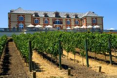 Winery in summer Stock Photos
