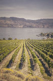 Winery View on Mountain Lake Royalty Free Stock Photo