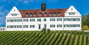 Winery and Vineyard-Meersburg,Germany,Europe Stock Image