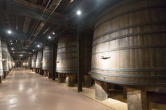 Winery  with vintage wooden barrels Royalty Free Stock Images