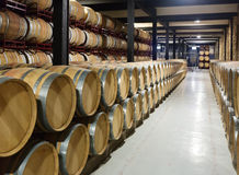 Winery  with   wooden barrels Stock Photos