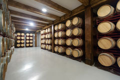 Winery with  wooden barrels Stock Images