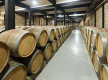 Winery with  wooden barrels in rows Stock Photography