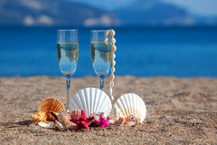 Wines glasses,shells,starfishes Royalty Free Stock Photo