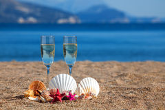 Wines glasses,shells,starfishes Stock Images