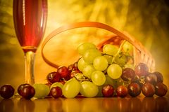 Wines with grapes placed on the table royalty free stock images