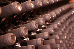 Wines in a row. Wine cellar with old wine bottles Royalty Free Stock Photo