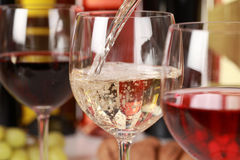 Winetasting Royalty Free Stock Photography