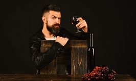 Winetasting and degustation concept. Sommelier leans on wooden chair. Man with beard holds glass of wine on dark brown background. Degustator with serious face stock images