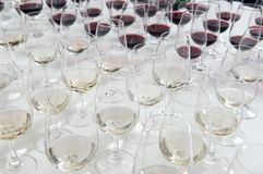 Winetasting glasses Royalty Free Stock Photography