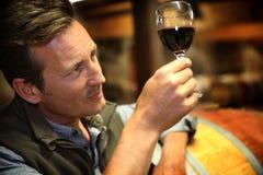 Winewgrower dans la cave vérifiant la couleur du vin image libre de droits