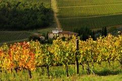 Wineyard avec la vieille ferme dans le chianti, Toscane image libre de droits