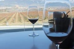 Wineyard localizó en La Rioja España foto de archivo