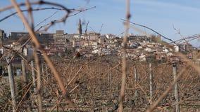 Wineyard placerade i La Rioja Spanien Royaltyfria Bilder