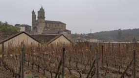 Wineyard placerade i La Rioja Spanien Fotografering för Bildbyråer