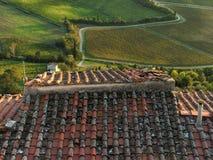 Wineyard in tuscany Stock Photo