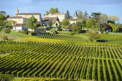 Wineyards av Saint Emilion, Bordeaux vingårdar Royaltyfri Foto