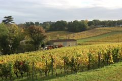 Sun over Winery in Saint Emilion. Wineyards of Chateau Valandraud in St Emilion, France, during autumn Royalty Free Stock Image