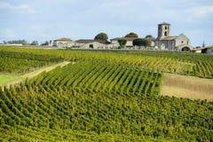 Wineyards de Saint Emilion, viñedos de Burdeos Fotos de archivo libres de regalías