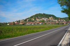 Wineyards di estate di regione di Veneto immagine stock