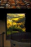 Wineyards en Toscana, Chianti, Italia fotografía de archivo libre de regalías