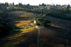 Wineyards en Toscane, chianti, Italie image stock