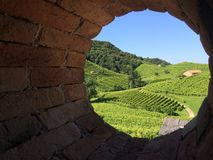 Wineyards of Prosecco. Wineyards in Valdobbiadene (Treviso, Italy) through an old roundshape windows Stock Photos