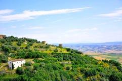 Wineyards in Toscanië, Italië Stock Afbeeldingen