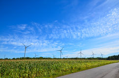 Winfarm. Windmills by a corn field att blue sky on the island Oland in Sweden Royalty Free Stock Photo