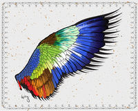 Wing. Vector EPS8 format. You can use any  compatible software to open/modify/use the file. Scalable to any size without loss of quality Royalty Free Stock Images