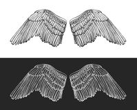 Wing Angel Hand Draw Sketch Vetor ilustração stock