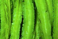 Wing bean Stock Image