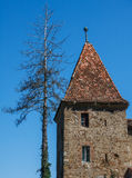 Wing Castle. Royalty Free Stock Photos