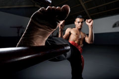 Wing Chun Kung Fu Stock Photos